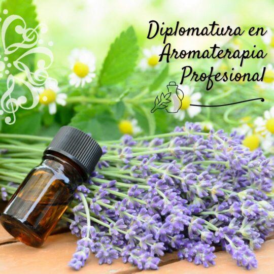 Diplomatura en Aromaterapia Profesional