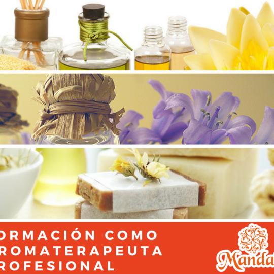 Formación cómo Aromaterapeuta Profesional