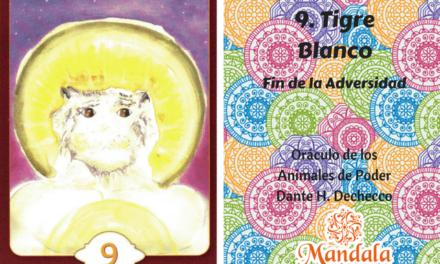 Oráculo del Día: Tigre Blanco