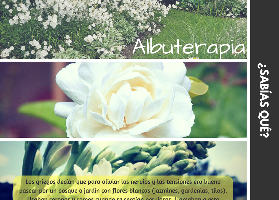 Albuterapia