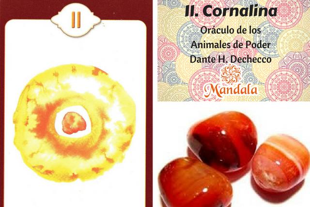 Oráculo del Día: Cornalina