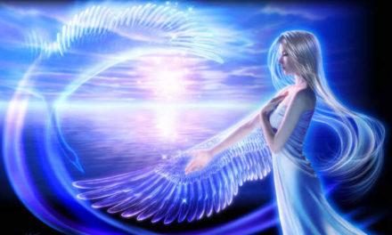 Conexión Celestial