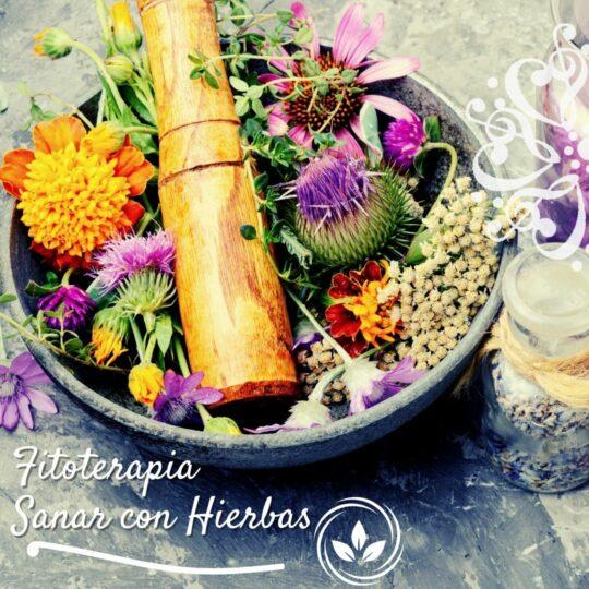 Fitoterapia, Sanar con Hierbas